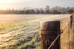 Nascer do sol em um polo gelado do prado e da cerca em África do Sul Fotos de Stock