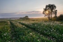 Nascer do sol em uma vila pequena do russo Imagens de Stock
