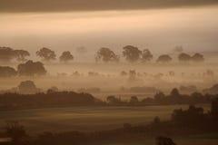 Nascer do sol enevoado Foto de Stock Royalty Free