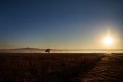 Nascer do sol enevoado Fotografia de Stock