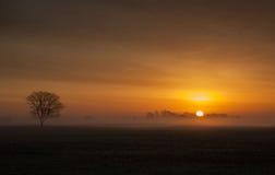 Nascer do sol enevoado Fotos de Stock Royalty Free