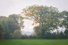Nascer do sol enevoado em Kent fotografia de stock