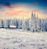 Nascer do sol fantástico do inverno na vila abandonada Carpathian com sn imagem de stock