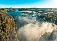 Nascer do sol, floresta e névoa da geada fotografia de stock