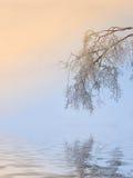 Nascer do sol frio Fotos de Stock Royalty Free