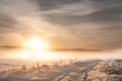 Nascer do sol gelado Foto da paisagem Fotos de Stock Royalty Free