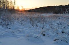 Nascer do sol gelado vermelho na floresta do inverno sob a neve branca Fotografia de Stock