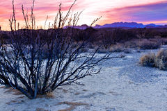 Nascer do sol grande da curvatura Imagem de Stock Royalty Free