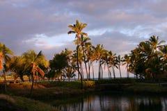 Nascer do sol havaiano fotografia de stock