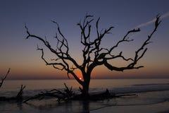Nascer do sol - ilha de Jekyll, Geórgia foto de stock