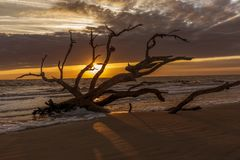 Nascer do sol - ilha de Jekyll, Geórgia imagem de stock royalty free