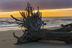 Nascer do sol - ilha de Jekyll, Geórgia fotos de stock royalty free