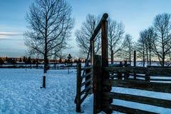 Nascer do sol do inverno sobre Cochrane, Cochrane, Alberta, Canadá Imagens de Stock