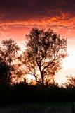 Nascer do sol maravilhoso imagens de stock