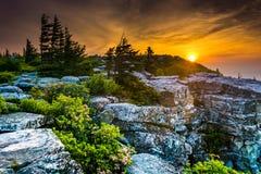 Nascer do sol na conserva das rochas do urso, em Dolly Sods Wilderness, Monon fotografia de stock royalty free