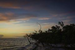 Nascer do sol na ilha de Sanibel Imagem de Stock