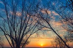 Nascer do sol na manhã do inverno Fotografia de Stock