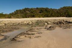 Nascer do sol na praia, Costa Rica fotografia de stock royalty free