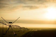 Nascer do sol na reserva natural do hula, Israel Fotografia de Stock Royalty Free