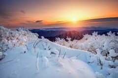 Nascer do sol nas montanhas de Deogyusan cobertas com a neve no inverno, Coreia Imagem de Stock Royalty Free
