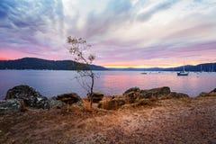 Nascer do sol nebuloso no foreshore Austrália de Brooklyn imagens de stock royalty free