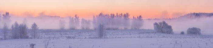 Nascer do sol nevoento do inverno foto de stock