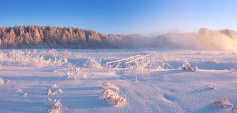 Nascer do sol nevoento do inverno foto de stock royalty free
