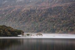 Nascer do sol nevoento do inverno impressionante na água de Crummock no distrito do lago imagens de stock