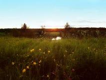 Nascer do sol no assoalho Fotos de Stock