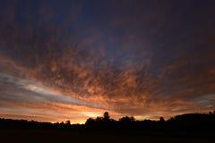 Nascer do sol no céu nebuloso do verão sobre a floresta no alvorecer Fotografia de Stock