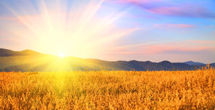 Nascer do sol no campo Fotografia de Stock Royalty Free
