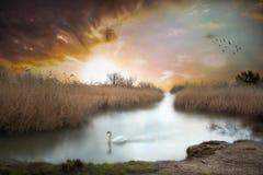 Nascer do sol no Danúbio Imagens de Stock