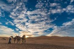 Nascer do sol no deserto de Sahara Fotografia de Stock Royalty Free