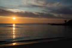 Nascer do sol no ginepro de cala Imagem de Stock