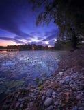 Nascer do sol no lago completamente do ` s do lírio de água Imagens de Stock