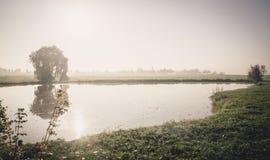 Nascer do sol no lago enevoado fotografia de stock