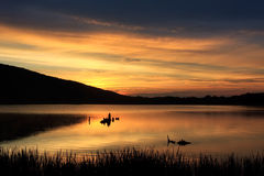 Nascer do sol no lago locust Fotos de Stock Royalty Free