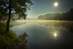 Nascer do sol no lago nevoento foto de stock royalty free