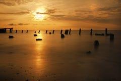 Nascer do sol no louro de Delaware Fotos de Stock
