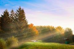 Nascer do sol no parque do outono Imagens de Stock Royalty Free