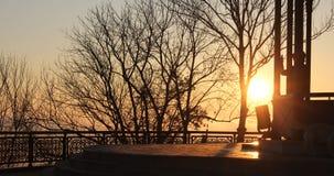 Nascer do sol no parque imagens de stock royalty free