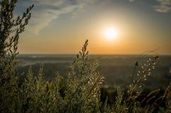 Nascer do sol no verão Foto de Stock Royalty Free