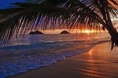 Nascer do sol pacífico na praia de Lanikai em Havaí imagem de stock