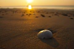 Nascer do sol pelo mar Fotos de Stock Royalty Free