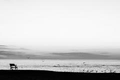 Nascer do sol preto e branco Fotografia de Stock