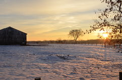 Nascer do sol que molda um fulgor dourado na exploração agrícola em uma manhã nevado do inverno imagens de stock royalty free