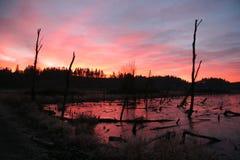 Nascer do sol Ridgefield 2 Foto de Stock Royalty Free