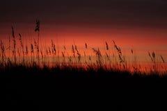 Nascer do sol roxo alaranjado Foto de Stock Royalty Free