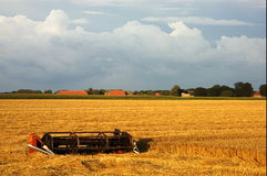 Nascer do sol rural foto de stock