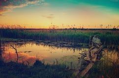 Nascer do sol rural do verão Fotos de Stock Royalty Free